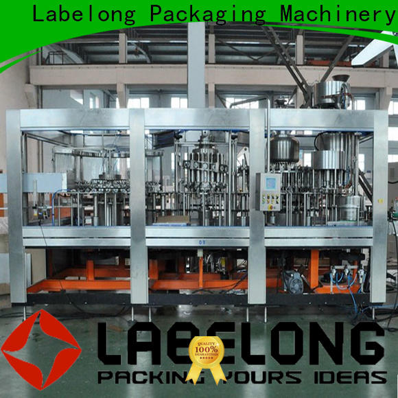 Labelong Packaging Machinery superior water filter plant machine price easy opearting for wine