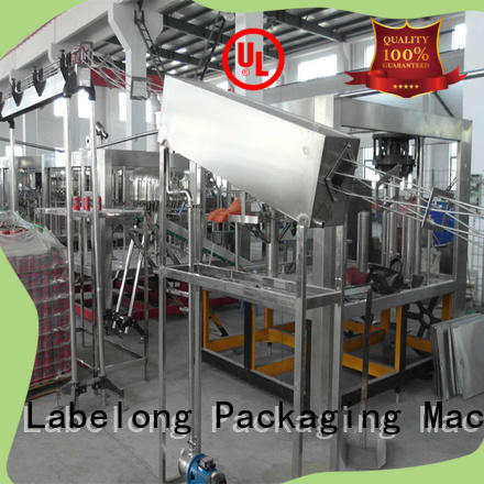 Labelong Packaging Machinery high quality bottle filling machinery for flavor water