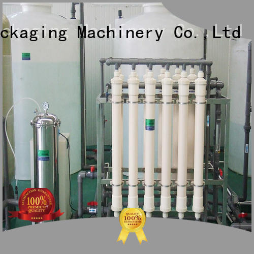 Labelong Packaging Machinery ro series water treatment machine embrane for mineral water